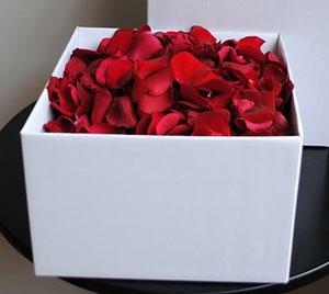 box-petals